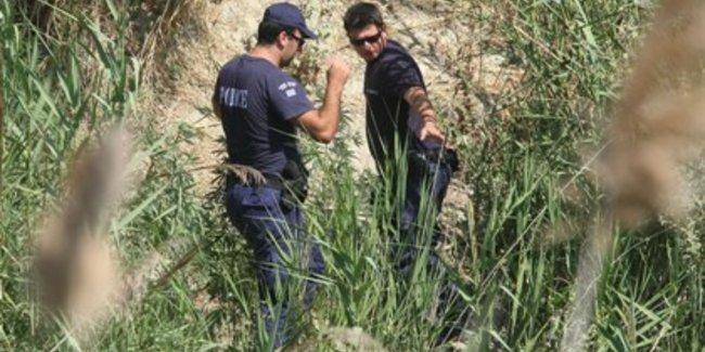 Σύλληψη 53χρονου ημεδαπού για καλλιέργεια κάνναβης  στο Νησί Γρεβενών