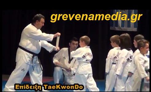 Επίδειξη TaeKwonDo στα Γρεβενά (pics & video)