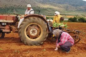Αγρότες είμαστε, όχι ηλίθιοι !!!