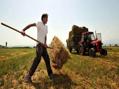 ΕΑΣ Γρεβενών: Αιτήσεις αγροτών για εγγραφή στον Α.Σ Γρεβενών