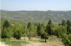 Πρόσκληση για την παρουσίαση και τη συνεργασία του Γεωπάρκου Τυθήος με το Δήμο Γρεβενών