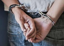 Γρεβενά: Σύλληψη δύο ατόμων για κλοπή