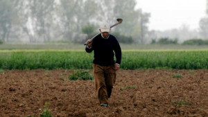 ΟΠΕΚΕΠΕ: Συμβουλές προς τους αγρότες για τη σωστή υποβολή αιτήσεων