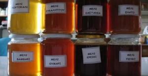 Έρευνα από το ΑΠΘ εξέτασε 48 διαφορετικά ελληνικά μέλια και το αποτέλεσμα ήταν απίστευτο! Βρέθηκε το Ελληνικό μέλι με την περισσότερο ευεργετική δράση