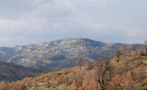 kaliraxi-grebenon