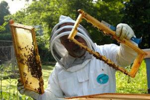 Κάλεσμα του Μελισσοκομικού Συλλόγου Γρεβενών προς τα μέλη του