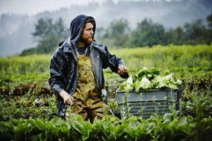 Π.Ε. Γρεβενών: Ένταξη επιλαχόντων στο πρόγραμμα νέων γεωργών