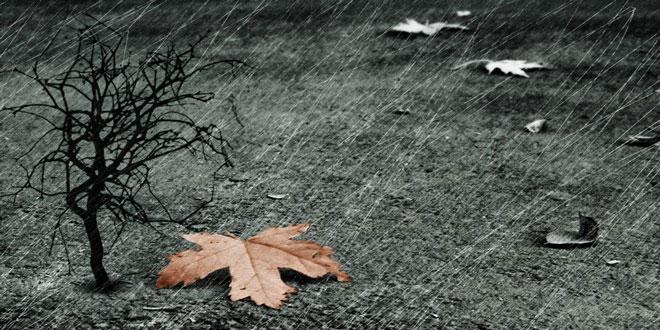 Φθινοπωρινή εβδομάδα με πολλές βροχές διαρκείας – Δείτε τι καιρό θα κάνει τις επόμενες ημέρες