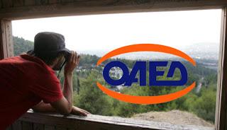 ΟΑΕΔ: Εκδόθηκε η προκήρυξη για την κοινωφελή εργασία στην πυροπροστασία