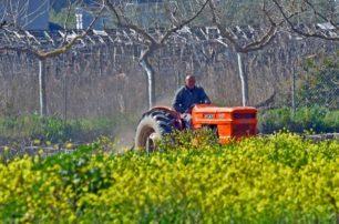Nέα προκήρυξη 120 εκατ. ευρώ για βιολογική γεωργία