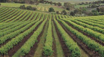 Αγροτικός Συνεταιρισμός Γρεβενών – Ενημερωτική εκδήλωση με θέμα «Μικροπιστώσεις: Ένα εργαλείο για νέους επιχειρηματίες στον κλάδο της αγροδιατροφής»