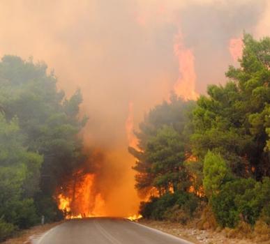Αγροτοδασικές πυρκαγιές σε Γρεβενά και Καστοριά – Επέμβαση της Πυροσβεστικής