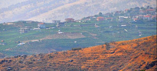 Το αλβανικό χωριό που αποτελεί την πρωτεύουσα της κάνναβης στην Ευρώπη – Το 90% των κατοίκων καλλιεργεί φυτείες