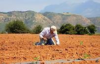Έφυγαν από την πολιτική για να γίνουν αγρότες