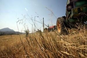 Έρχονται μηνιαίες ασφαλιστικές εισφορές για 650.000 αγρότες αρχής γενομένης από τα τέλη του ερχόμενου Φλεβάρη. Αναλυτικοί πίνακες για όλα τα εισοδήματα