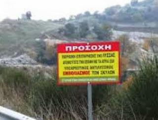 Ρίψεις δολωματικών εμβολίων, κατά της λύσσας, από 21 ως τις 24 Οκτωβρίου και σε περιοχές της Δυτικής Μακεδονίας