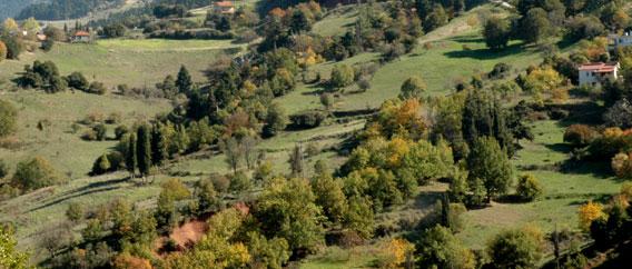 Περιφερειακή Ενότητα Γρεβενών: ΄΄Ενισχύσεις αγροτών που ασκούν γεωργική δραστηριότητα σε περιοχές Natura ΄΄