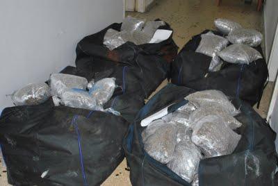 Σαρώνουν τα ναρκωτικά στη Δυτική Μακεδονία …