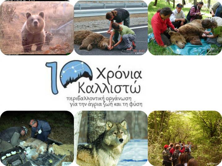 Γιορτάζουμε τα 10 χρόνια λειτουργίας και δράσεων της ΚΑΛΛΙΣΤΩΣ