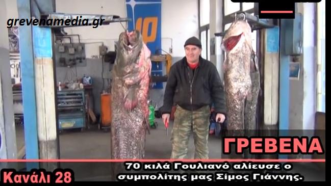 Γρεβενά: 70 κιλά γουλιανό αλίευσε ο συμπολίτης μας Σίμος Γιάννης (video)