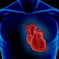 Tεστ δείχνει την αληθινή ηλικία της καρδιάς