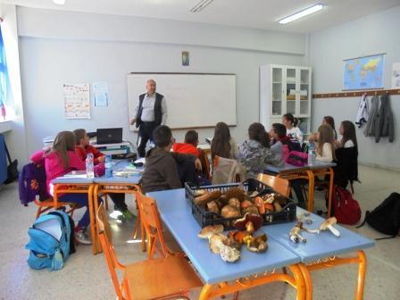 video: Τα μανιτάρια «φύτρωσαν» στην τάξη!