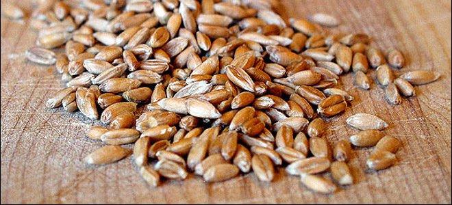 Ολη η αλήθεια για το ψωμί από αλεύρι ζέας που παράγεται κυρίως στα Γρεβενά