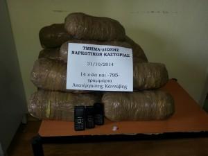 Aλβανοί πήγαν να…περάσουν από το Γράμμο με 14 κιλά χασίς – Τους ΄΄τσίμπησε΄΄ η Δίωξη