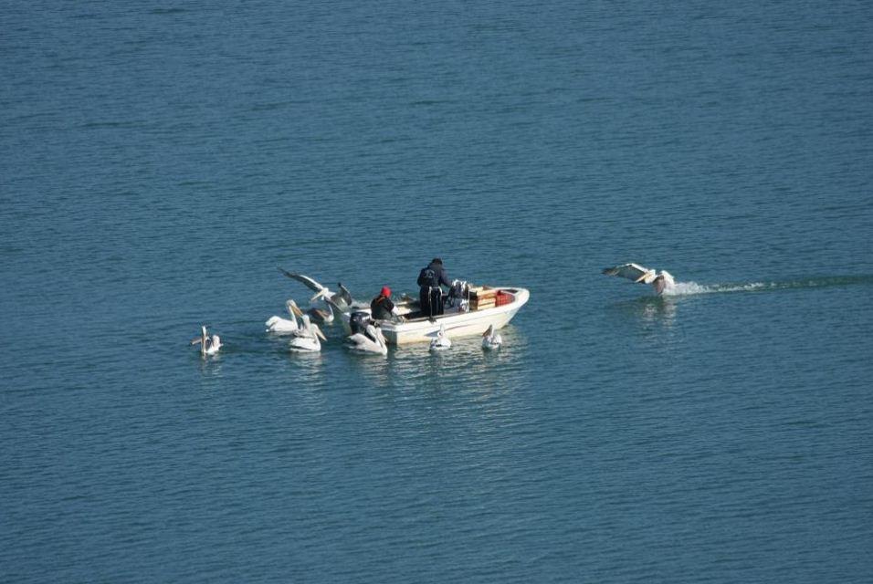 Σύλληψη τριών ατόμων για παράνομη αλιεία στη λίμνη Πολυφύτου Σερβίων