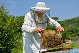 Εκλογές στον Σύλλογο Μελισσοκόμων Γρεβενών