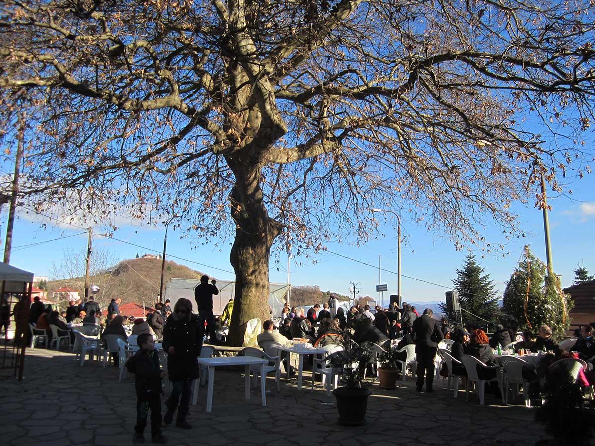Χριστουγεννιάτικες εκδηλώσεις από τον Σύλλογο Μοναχιτίου (φωτογραφίες)
