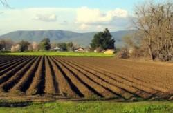 Ανακοίνωση του Αγροτικού Συνεταιρισμού Γρεβενών
