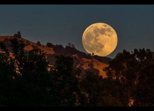 Το Τρανό Φεγγάρι και φέτος στην Αγία Σωτήρα Βοϊου