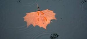 Εκτακτο δελτίο επιδείνωσης καιρού -Βροχές και καταιγίδες σε όλη τη χώρα