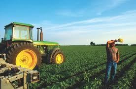 Κοζάνη: Δημιουργούν Ομοσπονδία αγρότες και κτηνοτρόφοι της Κεντροδυτικής Μακεδονίας