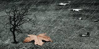 Δ/νση Πολιτικής Προστασίας της Περιφέρειας Δυτικής Μακεδονίας: Bροχές, καταιγίδες, και ενισχυμένoι Νότιοι άνεμοι από τις πρωινές ώρες της Κυριακής