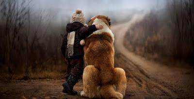Ο σκύλος ακούει ό, τι νιώθουμε