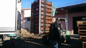 Περιφερειακή Ενότητα  Γρεβενών: Δωρεάν διανομή πορτοκαλιών