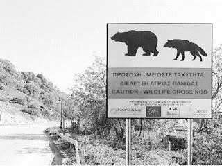 Μεγάλος αριθμός νεκρών ή τραυματισμένων ζώων στην Εγνατία Οδό