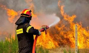Συνεδρίασε το Συντονιστικό Όργανο Πολιτικής Προστασίας της Π.Ε. Γρεβενών για δασικές πυρκαγιές 2016