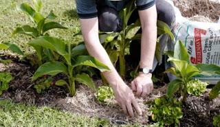 Διώξτε το στρες δουλεύοντας στον κήπο σας!
