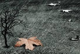 Βροχές και κρύο στην πόλη των Γρεβενών και στα χωριά