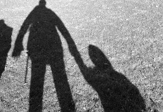 Γκρι βανάκι στο Πρωτοχώρι Κοζάνης απειλεί παιδιά