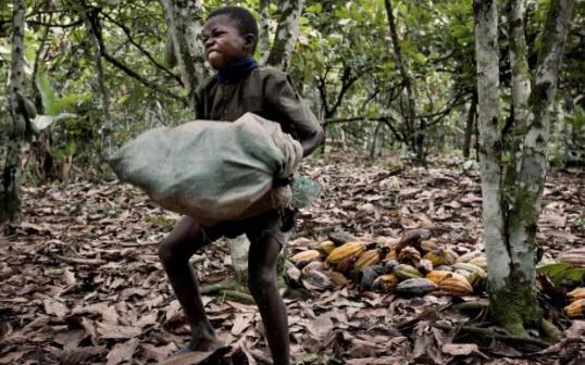 """""""Όταν ο κόσμος τρώει σοκολάτα, τρώει τη σάρκα μου"""". Η μαρτυρία ενός παιδιού σκλάβου"""