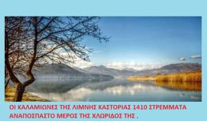 Βίντεο: Γράμμος, Αλιάκμων και Λίμνη Καστοριάς: Αφιέρωμα του Σταύρου Π. Καπλάνογλου