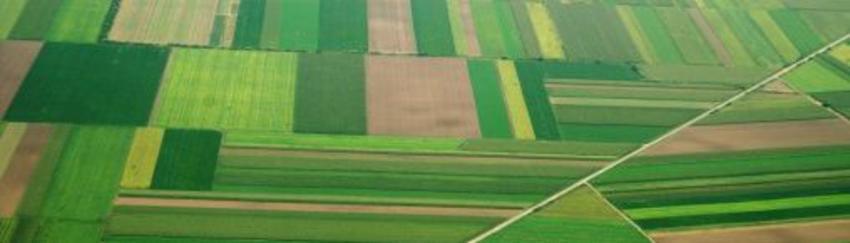 Τίτλοι ιδιοκτησίας ύστερα από 46 χρόνια για 117 αγρότες της Αιανής