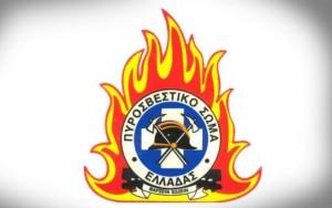 Πυροσβεστική Υπηρεσία Γρεβενών: Κοινωνικό μήνυμα για την πρόληψη των δασικών πυρκαγιών