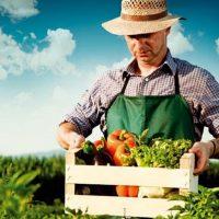 Η Κρήτη δίνει συμβουλές στη Δυτική Μακεδονία για την Αγροδιατροφική Σύμπραξη
