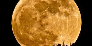 Πότε θα δούμε το κοντινότερο φεγγάρι. Ποιο φαινόμενο δεν έχει συμβεί ποτέ στην ιστορία της αστρονομίας και θα συμβεί φέτος.