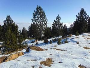 Χειμερινές φωτογραφίες της Πίνδου * Του Γιάννη Τζατζάνη